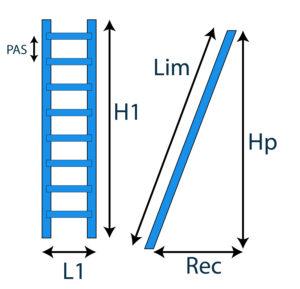 schéma échelle